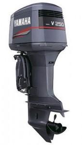 L 250 GETOX